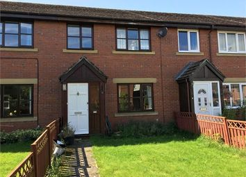 Thumbnail 3 bedroom terraced house for sale in Tyne Green, Hexham