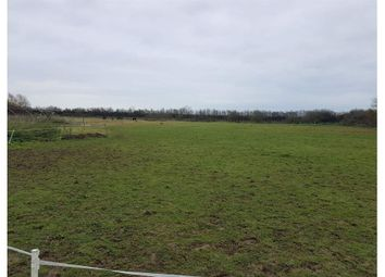 Thumbnail Land for sale in Grazing Land, Barnham, West Sussex
