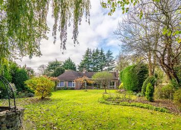 Thumbnail 6 bed detached house to rent in Sudbury Hill Close, Sudbury, Wembley