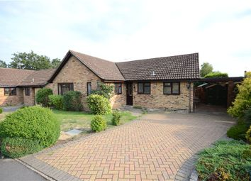 Thumbnail 3 bed detached bungalow for sale in Templar Close, Sandhurst, Berkshire