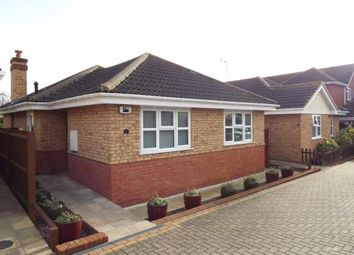 Thumbnail 3 bed bungalow for sale in Hockley Essex