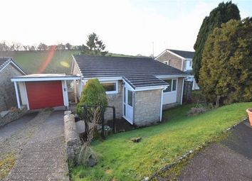 Thumbnail 2 bed detached bungalow to rent in Bourchier Close, Bampton, Tiverton