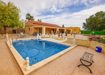 Thumbnail Finca for sale in Alicante, Elche, Partida Daimes - Santa Fe