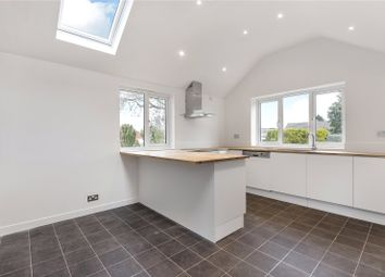 Thumbnail 4 bed bungalow to rent in Perrott Close, North Leigh