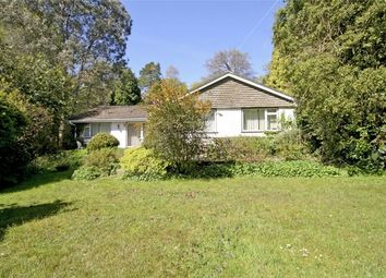 Thumbnail 4 bed detached bungalow for sale in Avon Castle, Ringwood, Hampshire