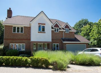 Thumbnail 5 bed detached house to rent in Milestones, Holt Lane, Wokingham, Berkshire