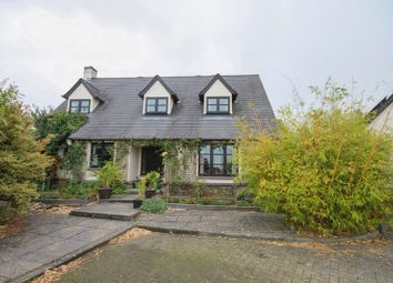 Thumbnail 4 bedroom detached house to rent in Saddlers Close, Crockernwell, Exeter