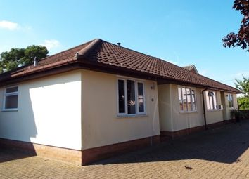 Thumbnail 2 bed bungalow to rent in Broad Meadow, Walsham-Le-Willows, Bury St. Edmunds