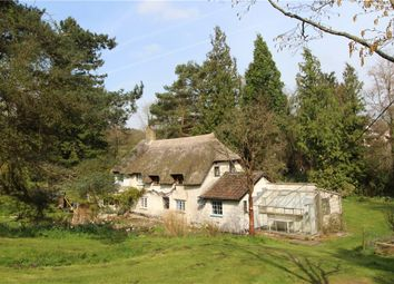 Thumbnail 4 bed property to rent in Kilmington, Axminster, Devon