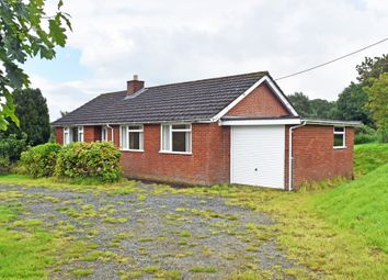 Thumbnail 3 bed detached bungalow to rent in Cefnllys, Llandrindod Wells