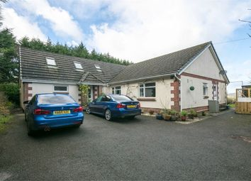 Thumbnail 6 bed detached bungalow for sale in Llanddowror, St Clears, Carmarthen
