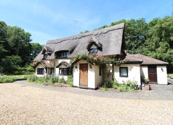 Thumbnail 5 bed detached house for sale in The Avenue, Great Barton, Bury St. Edmunds