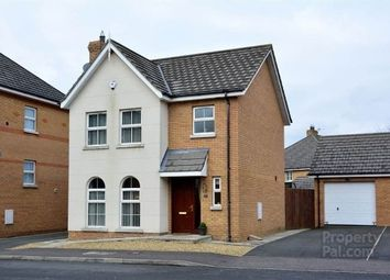 Thumbnail 3 bed detached house to rent in Mornington View, Ballinderry Upper, Lisburn