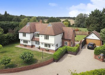 Thumbnail 4 bed detached house for sale in Edney Wood, Writtle, Chelmsford
