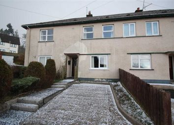 Thumbnail 2 bed flat to rent in Croob Park, Ballynahinch, Down