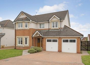Thumbnail 4 bed detached house for sale in Pitlochry Place, Westcraigs, Blantyre, South Lanarkshire