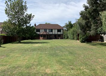 Thumbnail 4 bed detached house to rent in Evergreens, North Road, South Ockendon, Essex