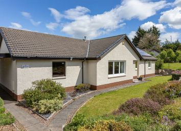 Thumbnail 4 bed detached bungalow for sale in Bourach, 55 The Loan, Selkirk