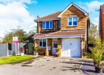 Thumbnail 4 bed detached house for sale in All Saints Meadows, Laughton Common, Sheffield