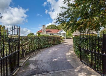 Amsbury Road, Hunton, Maidstone, Kent ME15. 5 bed detached house for sale