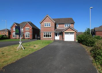 Thumbnail 4 bed detached house to rent in Bellis Way, Walton-Le-Dale, Preston