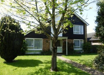 Thumbnail 4 bedroom detached house for sale in Christmas Lane, Lowestoft