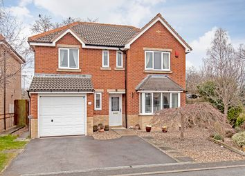 Thumbnail 4 bed detached house for sale in Pearson Croft, Chesterfield
