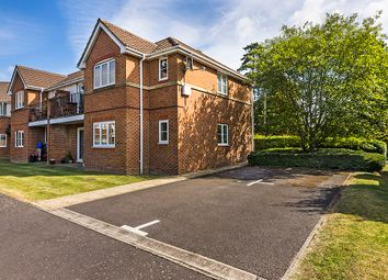 Thumbnail 2 bed flat to rent in Clover Leaf Way, Old Basing