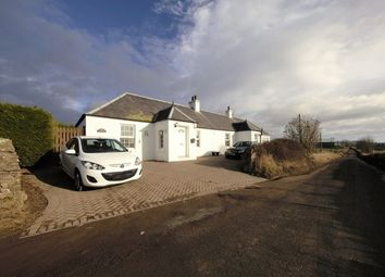 Thumbnail 4 bed cottage for sale in Dronley, Dundee
