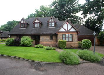 Thumbnail 4 bedroom detached house to rent in Coley Avenue, Woking