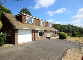 Thumbnail 4 bed detached house for sale in Worldham Hill, East Worldham, Alton, Hampshire