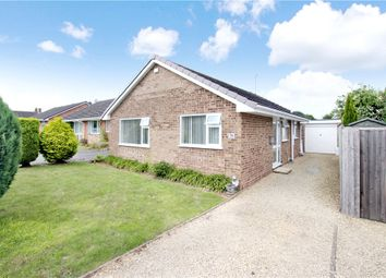 Thumbnail 3 bed bungalow to rent in The Beeches, Upton-Upon-Severn, Worcester, Worcestershire