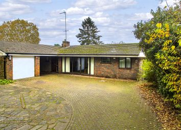 Thumbnail 4 bed detached bungalow for sale in Cheapside, Horsell, Woking