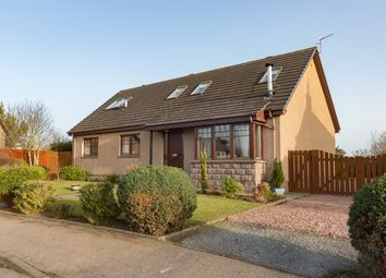 Thumbnail 4 bedroom detached house for sale in Croftlands, Montrose