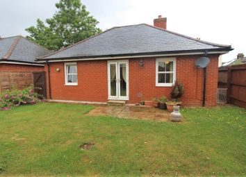 Thumbnail 2 bed bungalow to rent in Rosehill Road, Ipswich