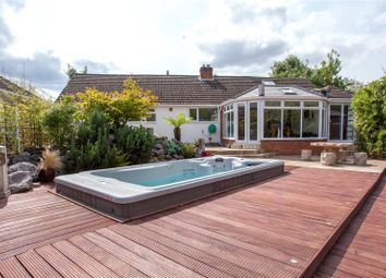 Thumbnail 4 bed detached bungalow for sale in Northbury Avenue, Ruscombe, Twyford, Berkshire