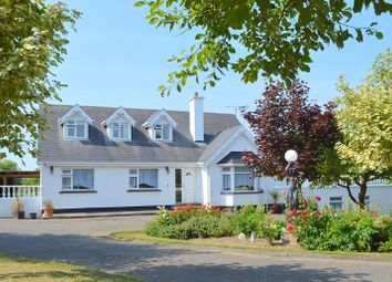 Thumbnail 6 bed detached house for sale in Highfield Cottage, Blackwater, Wexford