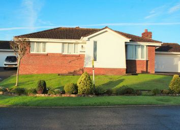 Thumbnail 3 bed bungalow for sale in Blenheim Close, Torquay