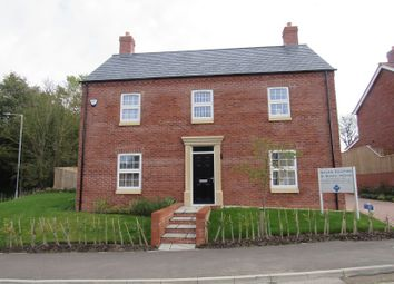 Thumbnail 4 bed detached house to rent in Ticklepenny Drive, Eastfield Road, Louth
