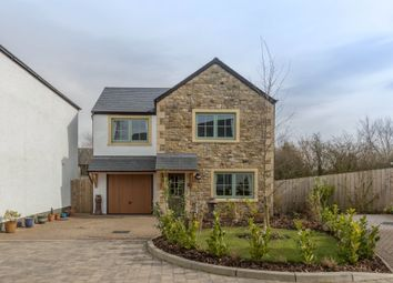 Thumbnail 3 bed detached house for sale in 4 The Sheiling, Arkholme, Nr Kirkby Lonsdale