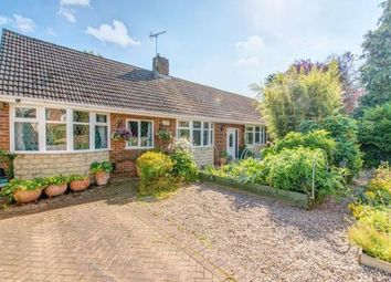 Thumbnail 4 bed detached bungalow for sale in Hardwick Drive, Mickleover, Derby