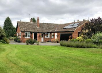 Thumbnail 3 bed detached bungalow for sale in Thormanby, York