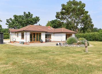 Thumbnail 3 bed bungalow for sale in Forest Road, Binfield