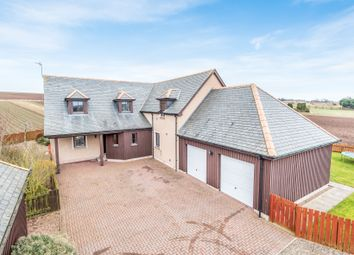 Thumbnail 4 bedroom detached house for sale in Montrose
