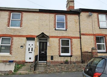 Thumbnail 3 bed terraced house for sale in Netley Road, Newton Abbot