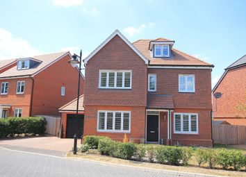 Thumbnail 5 bed detached house for sale in Curlew Grove, Blackwater, Camberley