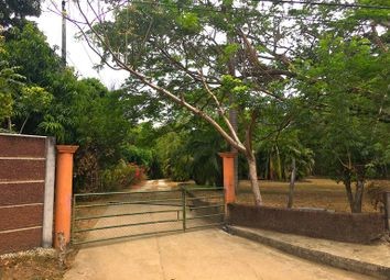 Thumbnail Land for sale in Playa Potrero, Guanacaste, Costa Rica