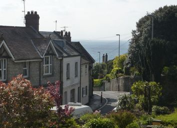 Thumbnail 2 bed terraced house for sale in Pound Road, Lyme Regis