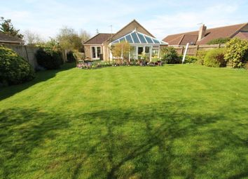 Thumbnail 4 bed detached bungalow for sale in Mereside, Soham, Ely