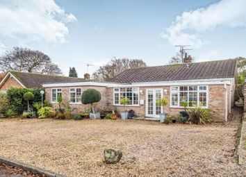 Thumbnail 4 bed bungalow for sale in Rollesby, Great Yarmouth, Norfolk